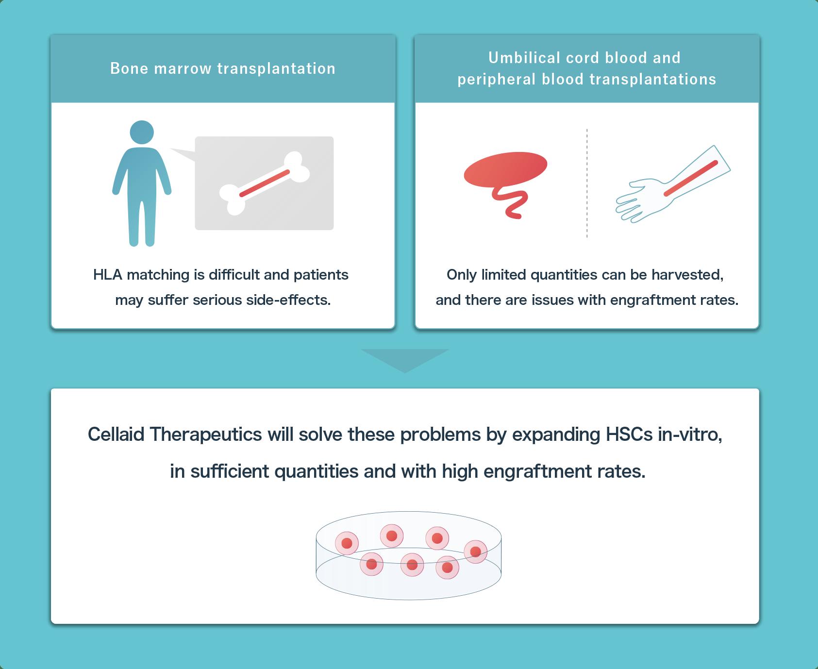 Challenges in hematopoietic stem cells transplants